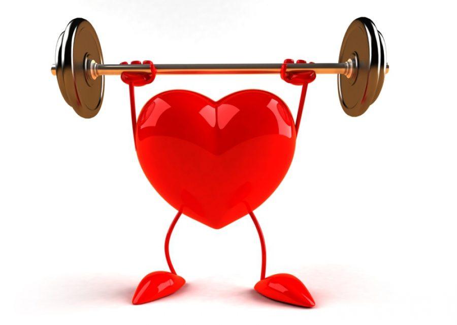Эволюция человеческого сердца: проблемы для малоподвижных людей?